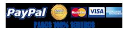logo-paypal2